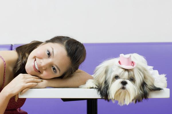 《一只狗的大学时光》角色介绍:克赛